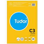 TUDOR C3 ENVELOPES POCKET PLAINFACE STRIP SEAL 100GSM 458 X 324MM GOLD PACK 25